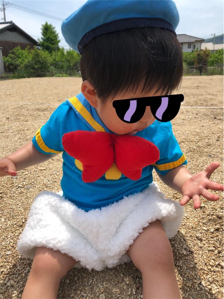 f:id:greenyuu:20190507232638j:image