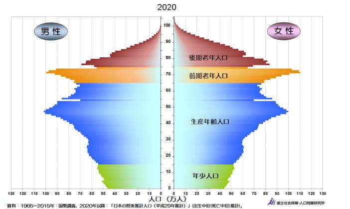 人口ピラミッド2020年