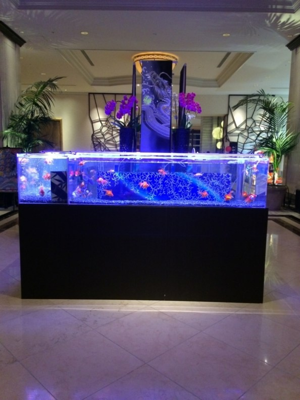 名古屋マリオットホテルの玄関ロビーの水槽