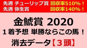 f:id:jikuuma:20200310020547j:plain
