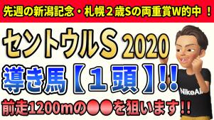 f:id:jikuuma:20200908181214p:plain