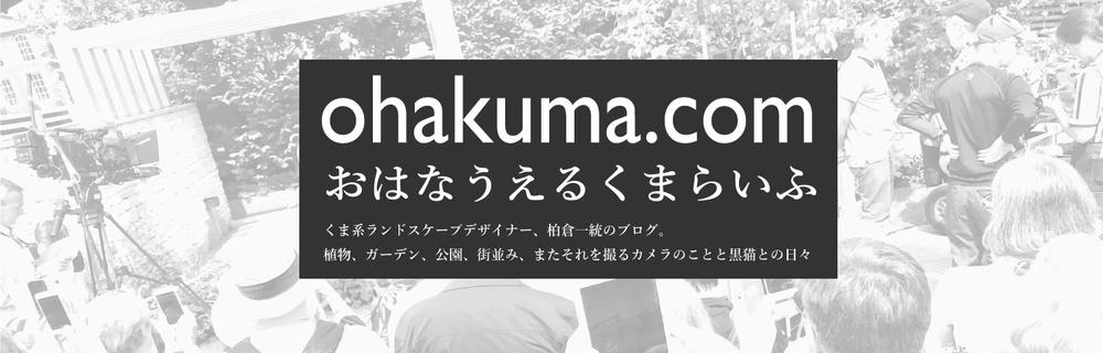 f:id:kazuto47:20190806010320j:plain