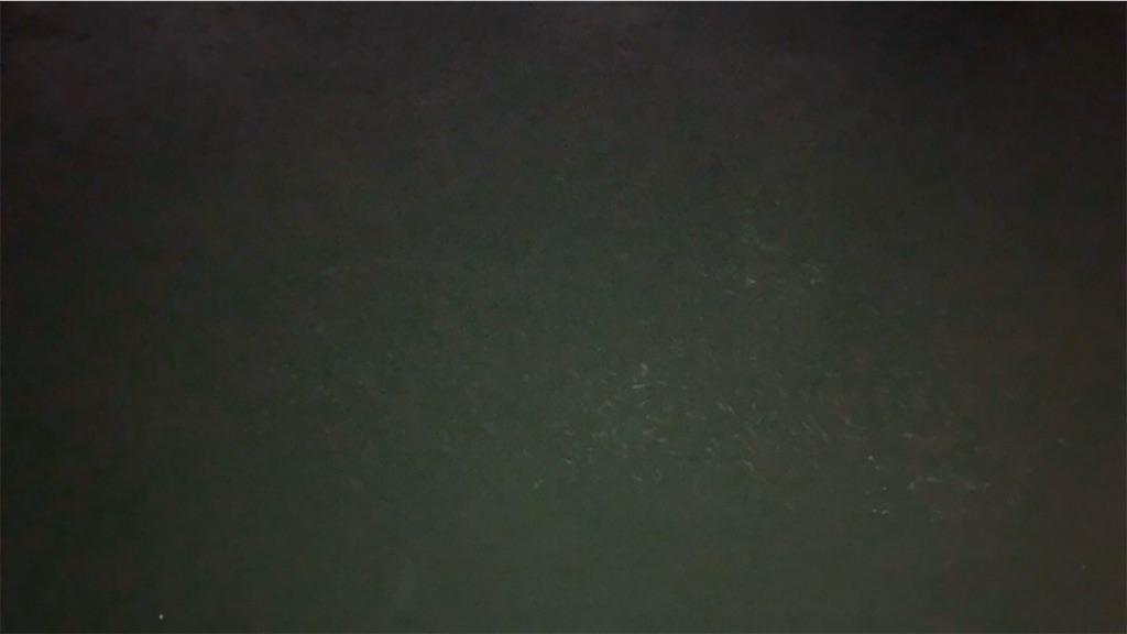 f:id:keeemura:20200709145455j:image