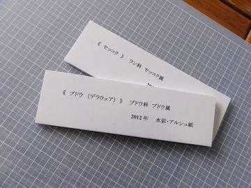 f:id:kyou2:20130326141039j:image