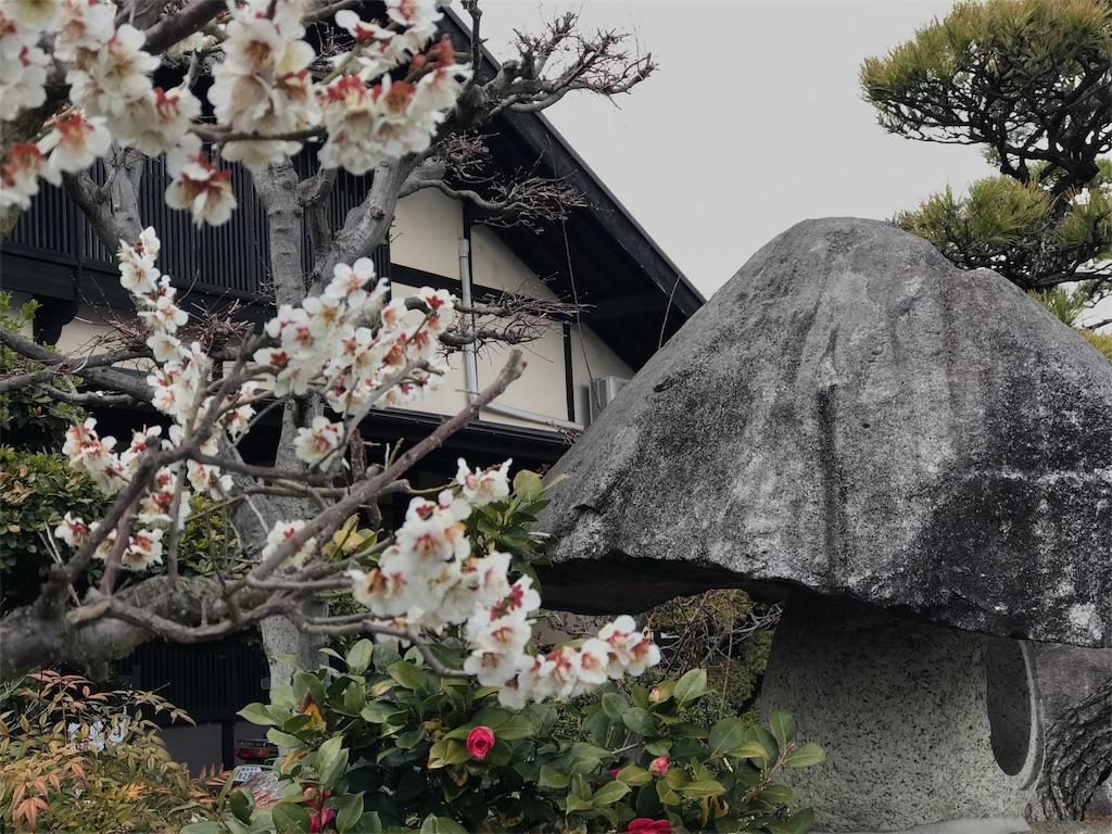 f:id:mika-shimosawa:20170328172139j:image
