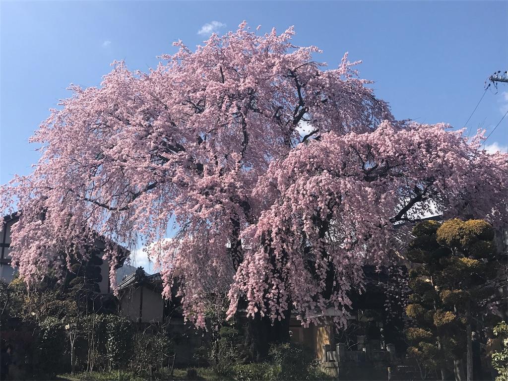 f:id:mika-shimosawa:20170413192213j:image