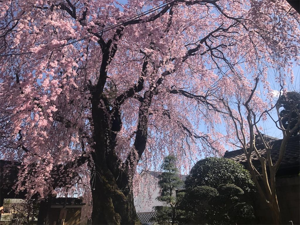 f:id:mika-shimosawa:20170413192239j:image