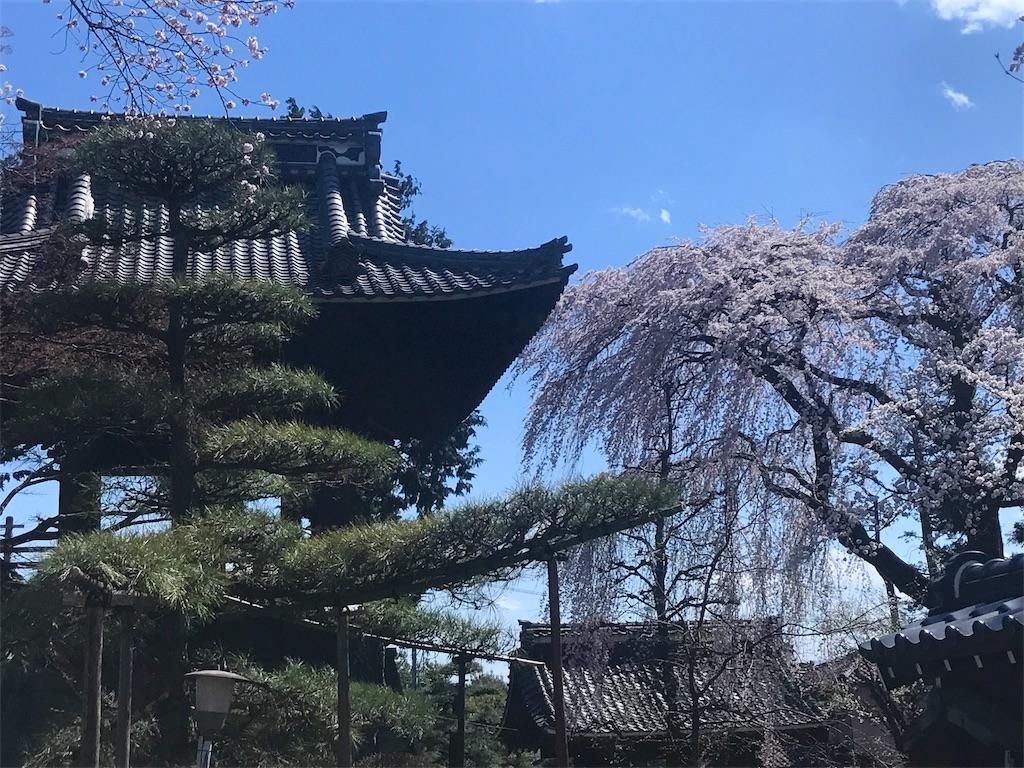 f:id:mika-shimosawa:20170418162903j:image