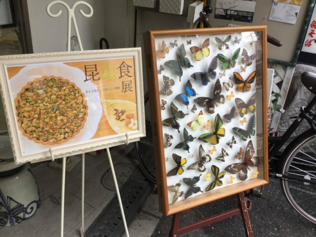 f:id:mushikurotowa:20171018100612j:image