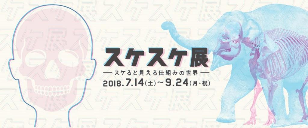 f:id:nattsu-2525-1023:20180802212631p:plain