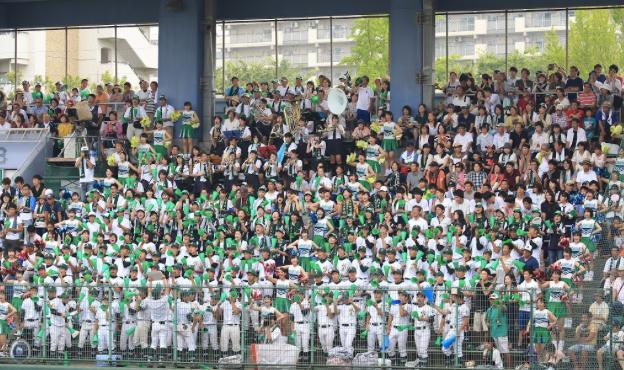 f:id:summer-jingu-stadium:20170716181935p:plain