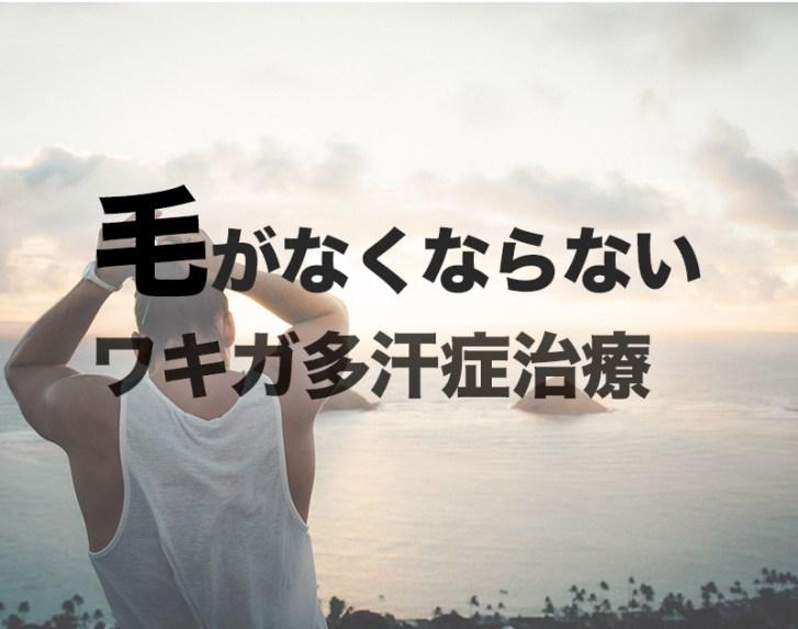 f:id:suzunasu:20170411013659j:plain