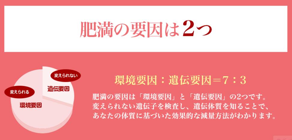 f:id:tokozo123:20181129131503p:plain