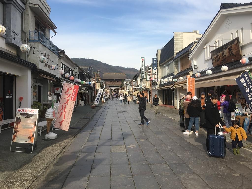 f:id:tokyotsubamezhenjiu:20190217141617j:plain