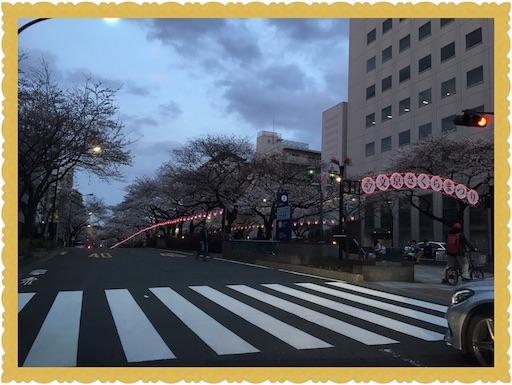 f:id:uchinokosodate:20180326090838j:image