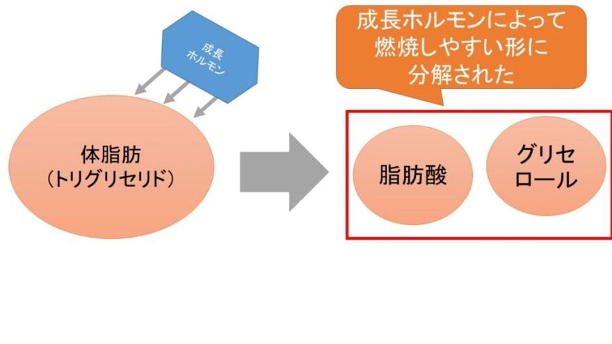 f:id:yoshimatsutakeshi:20160610141248j:plain