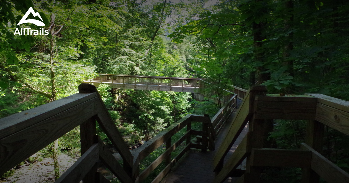 Best Trails In Cloudland Canyon State Park Georgia 717