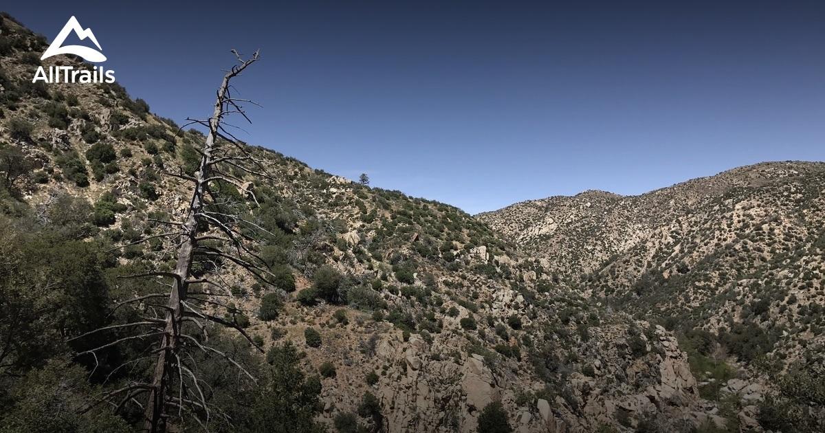 Best Trails near Lake Arrowhead, California