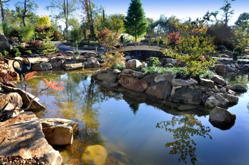 Beautiful Garden Ponds