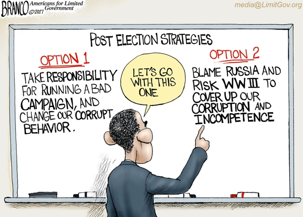 Image result for cartoons hillary clinton blames losing on others