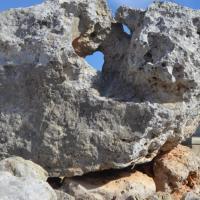 Heritage Malta celebrates European Heritage Days; Times of Malta