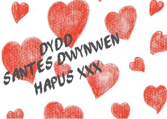 St Dwynwens Day