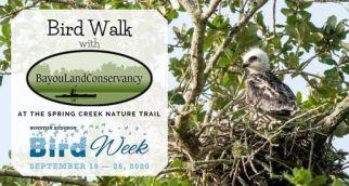 Bird Walk | Citizens Environmental Coalition