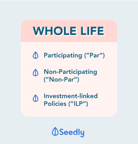 Types of Whole Life Policies