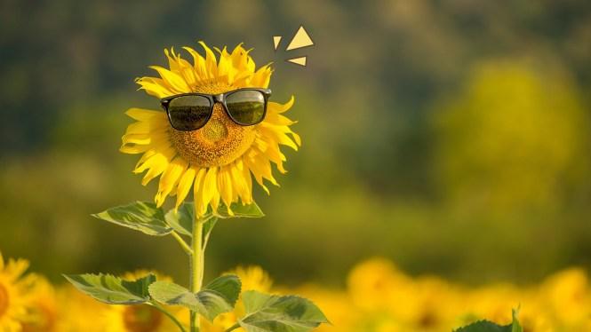 Manfaat Energi Matahari Sebagai Alat Penerangan
