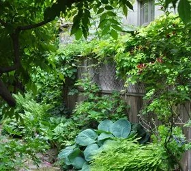 Gardening Ideas For The Narrow Garden Between Suburban ... on Narrow Backyard Landscaping Ideas  id=34599