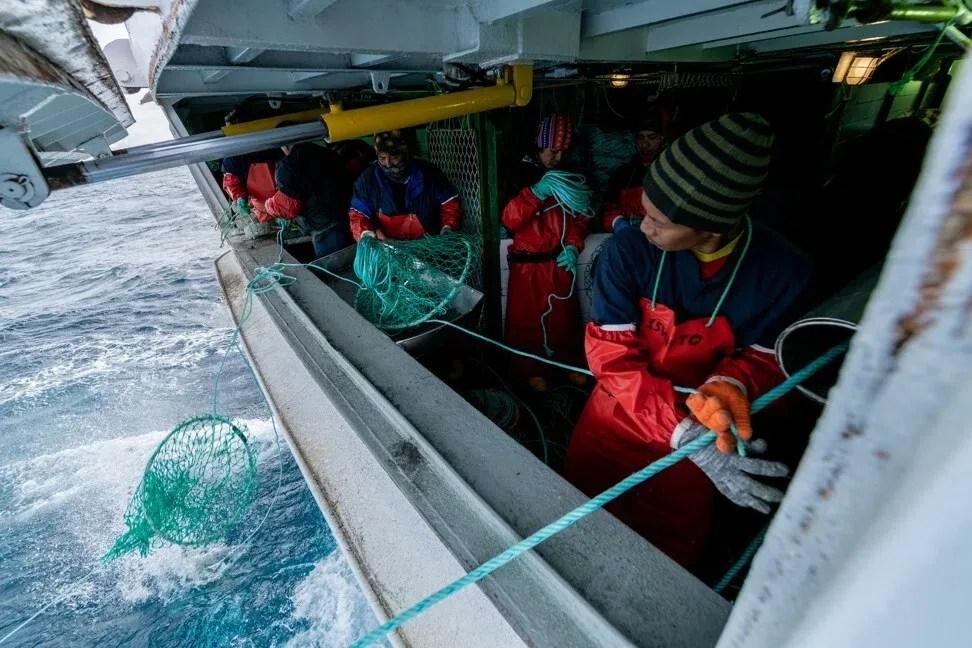 Pescadores en la Antártida, en enero de 2019. Foto: The Outlaw Ocean Project