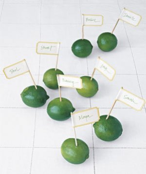 Tablescape Ideas Lime Place Cards Fresh Name Tag Name Cards Fruit Calligraphy Toothpick
