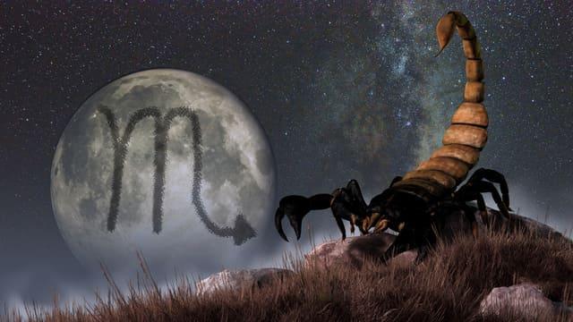 Scorpione,