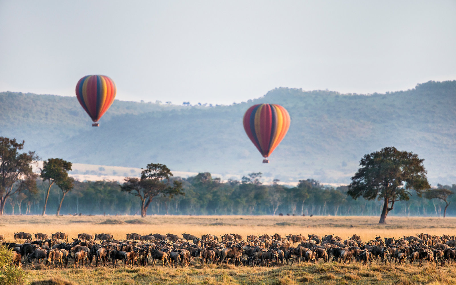 Hot Air Balloon, Masai Mara National Reserve - travel destinations, africa destinations, travel tips, travel ideas, travel hacks, travel guide, road trip, adventure travel, bucket list, south africa