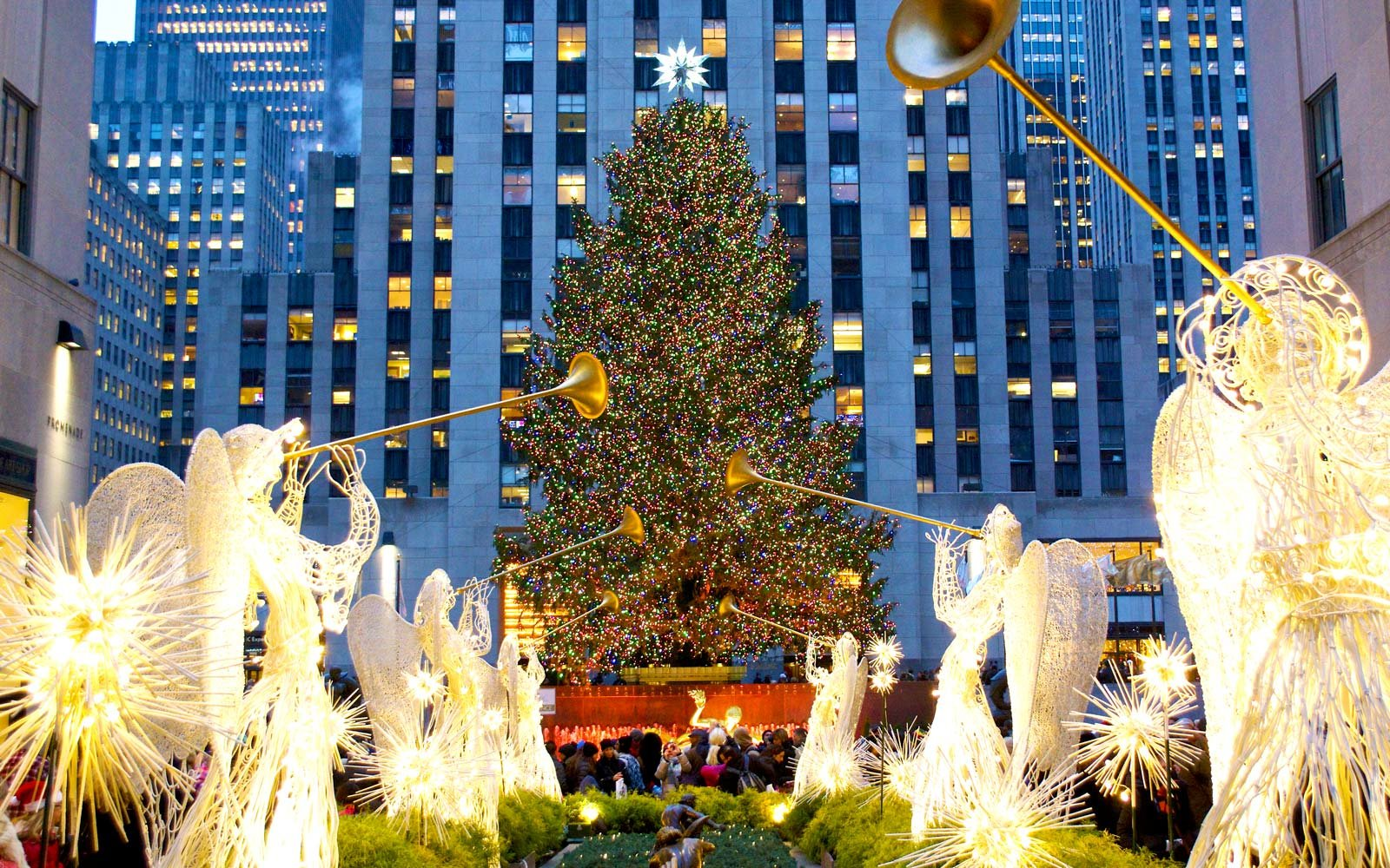 i got a glimpse of the christmas tree at rockefeller center im sure you have to either with your own eyeballs or on the social media platform of your