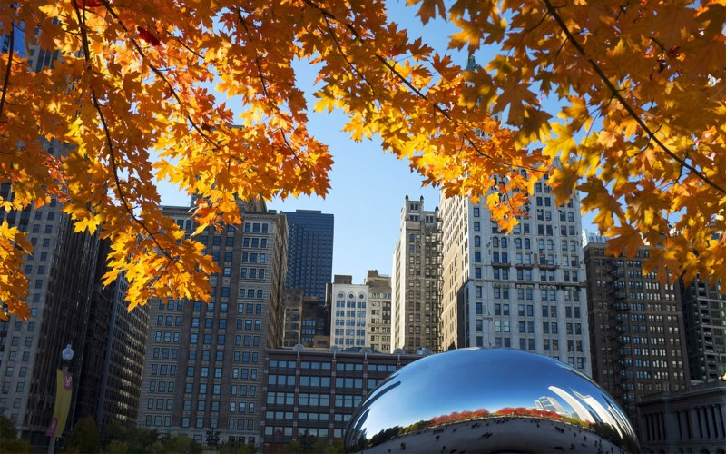Image result for chicago fall