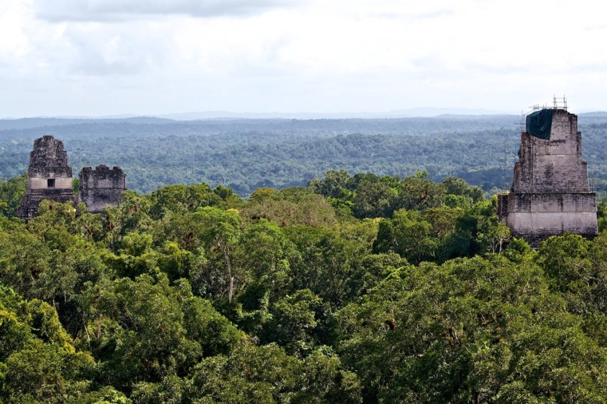 Central and South American Ruins Image: Three structures are poking their architectural heads above the canopy. We see an opening in at least one of them.