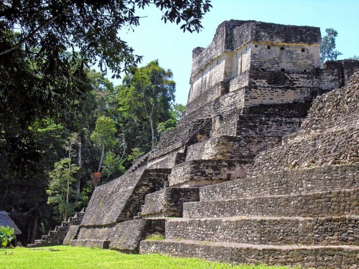 Central and South American Ruins Image: The steps of one of Belize's ancient structures in the midst of the jungle.