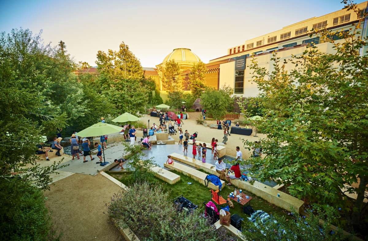 Image result for summer nights in the garden