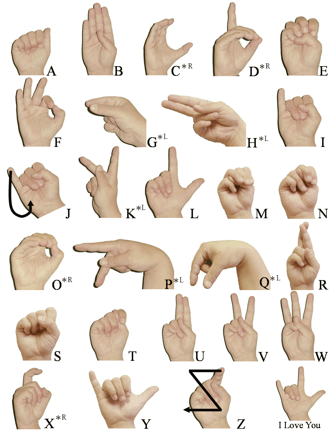 Weekend Project Sign Language And Static Gesture