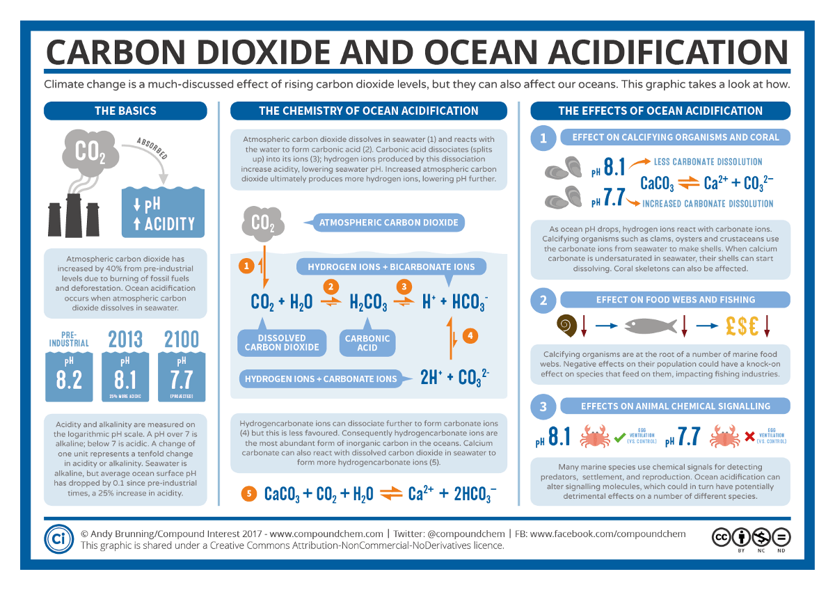 Trouble At Sea What Carbon Dioxide Emmisions Are Doing To Our Oceans