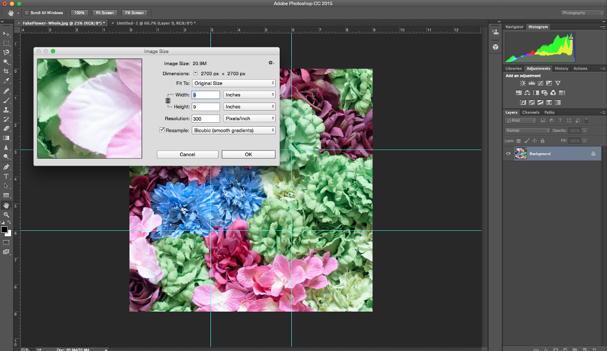 Photo Grid For Instagram With Photoshop CC 2015 Part 1
