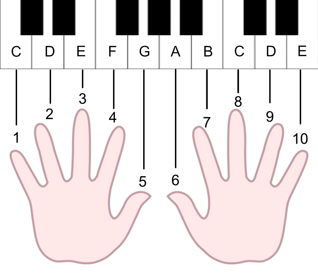 How Playing The Piano Taught Me Math Xiaoyun Yang Medium
