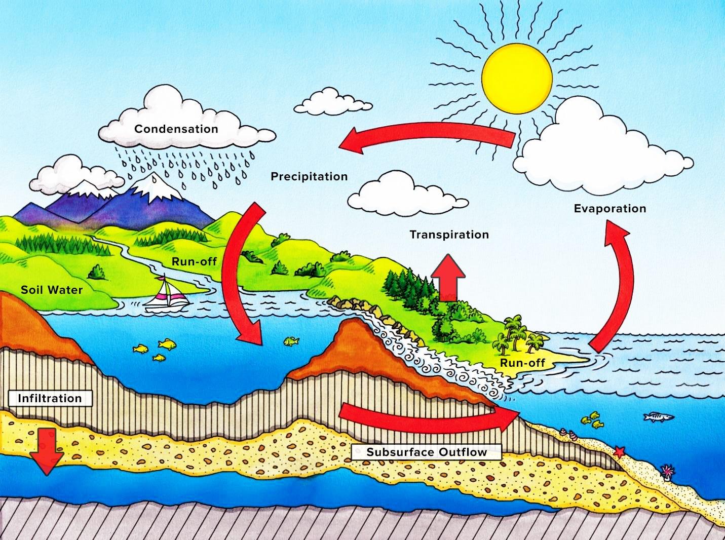 The Urban Water System Saturate Medium