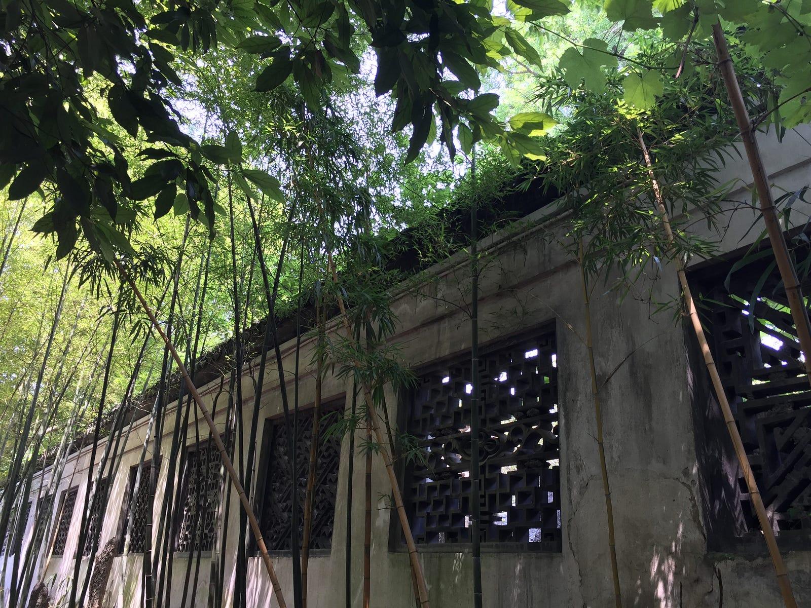 A Peek Behind The Bamboo Curtain: Part I