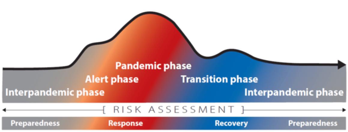 Importance of pandemic preparedness concept.