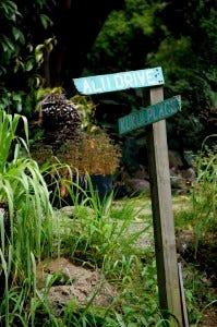 hawaii street sign