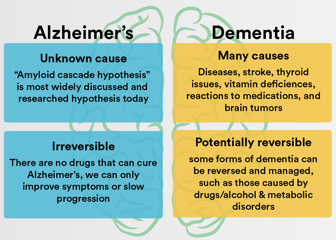 What Is The Difference Between Alzheimer S And Dementia