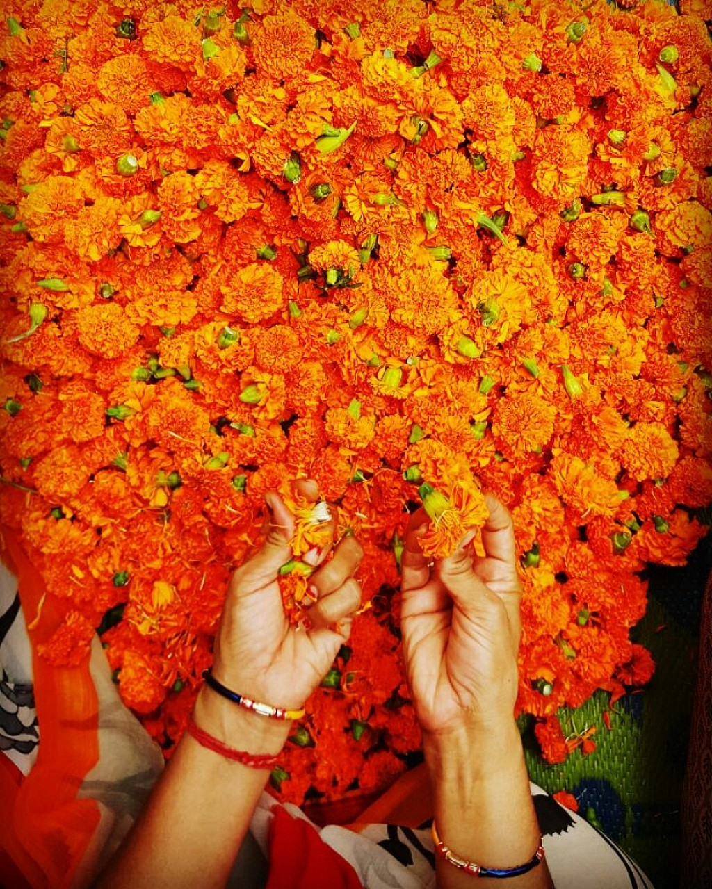 30 Photos That Proves Orange Color Is The Most Beautiful