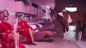Quando um cavalo chama mais a atenção que você no seu próprio clipe é porque tem alguma coisa errada